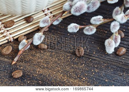 a willow on the old wooden table. Spring background