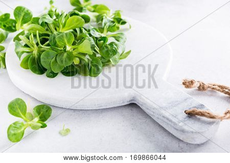 Background with green fresh field salad and marble cutting board on light gray stone table. Healthy food concept with copy space.