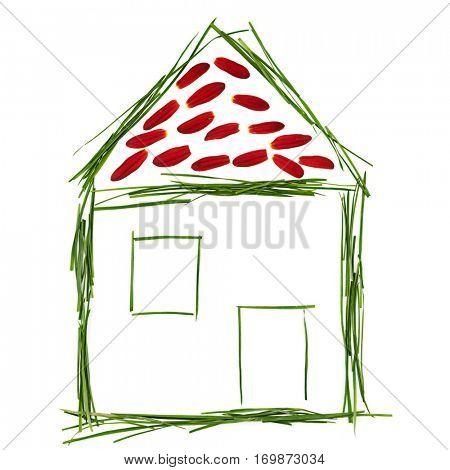 Environmental House Concept