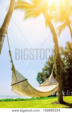 Hammock between two palm trees on the beach. Vacation concept