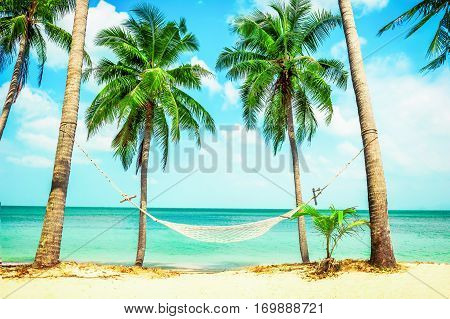 Beautiful beach. Hammock between two palm trees on the beach. Holiday and vacation concept. Tropical beach.