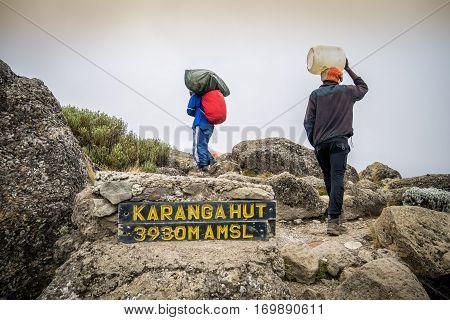 Porter Trekking Mount Kilimanjaro, Tanzania