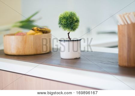 Faux topiary plant on a kitchen countertop