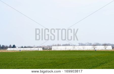 Greenhouse in green field in early spring - French village agriculture