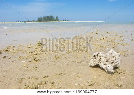 coral and fishing boat on the beach seascape and cloud in blue sky at asia beach selective focus coral