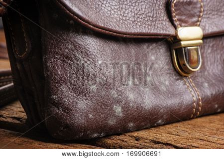 Mould On Bag