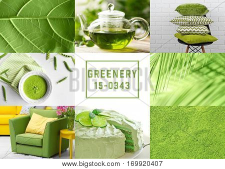 Trendy color concept. Set with greenery color poster