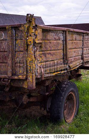 Overgrown lichen old truck body with wheel.