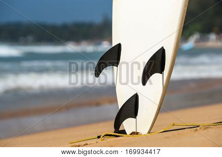 Surfboards Lays On The Tropical Beach
