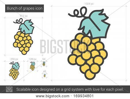 Bunch of grapes vector line icon isolated on white background. Bunch of grapes line icon for infographic, website or app. Scalable icon designed on a grid system.