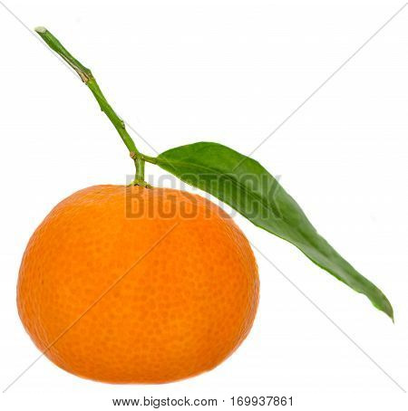 The Mandarin Orange (citrus Reticulata), Also Known As The Mandarin Or Mandarine, Isolated, White Ba