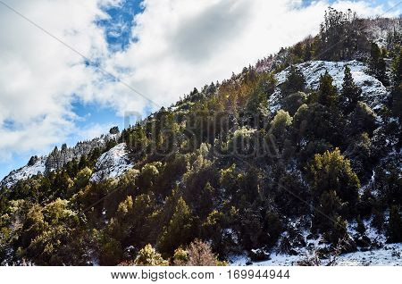 Hillside With Beautiful Light And Colors
