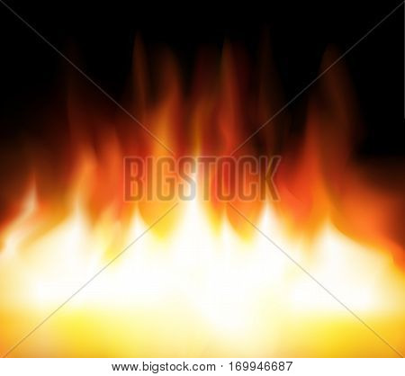 flame background on black vector fire, flame, vector, background, black, burn, hell, hot, heat,