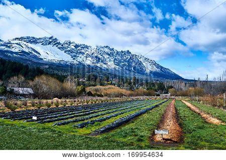 Farmlands In El Bolson