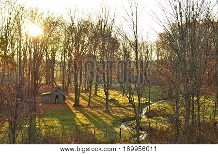 Morning view of a leaf covered valley with a creek and shed at sunrise
