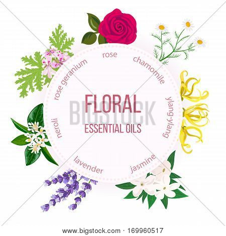 Essential oil labels set. Rose, Chamomile, jasmine, Ylang-ylang, , neroli, Lavender, rose Geranium. Round emblem. For cosmetics perfume health care products spa aromatherapy spa advertising tag