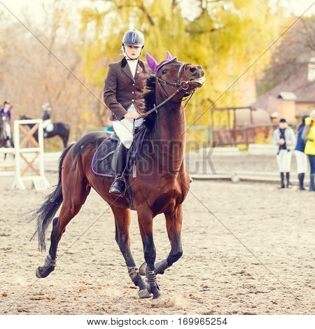 Young rider woman riding horse at the competition. Equestrian sport background