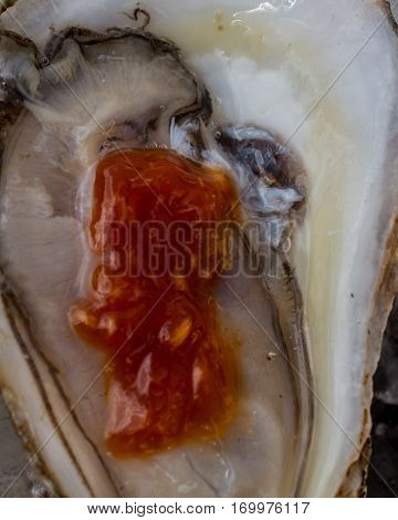 A close up of cocktail sauce blending with the liquor of a Raspberry Point Oyster from Prince Edward Island, Canada