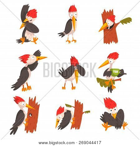 Cute Woodpecker Set, Funny Bird Cartoon Character In Different Situations Vector Illustration On A W