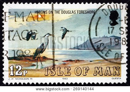 Isle Of Man - Circa 1983: A Stamp Printed In Isle Of Man Shows Herons, Are The Long-legged Freshwate