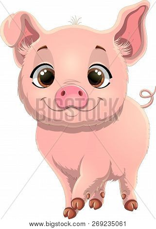 Illustration Of Cute Pig. Pretty Pig Cartoon Isolated On White Background.  Pig Cartoon Character