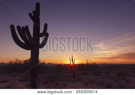 Arizona desert sunset landscape