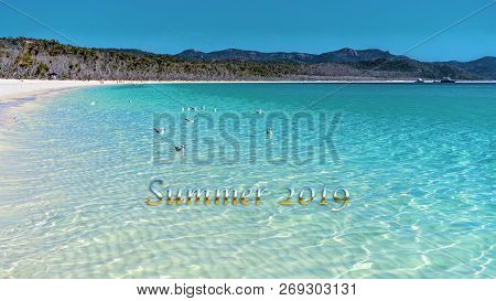 Summer 2019 Caption Text.  Seagulls Swimming In The Blue Water Of Whitehaven White Silica Sand Beach