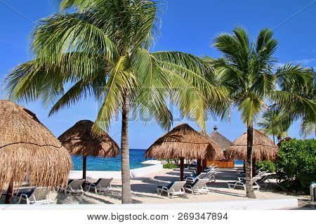 Swaying Palm Trees On A Caribbean White Sand Beach With Palapa Thatched Roof Umbrellas And Beach Lou