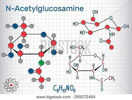 N-acetylglucosamine (nag) Molecule, Is The Monomeric Unit Of The Chitin And Polymerized With Glucuro