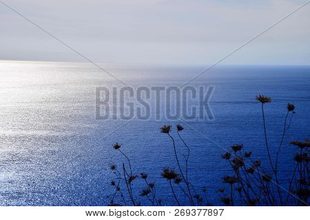 Mediterranean Sea In North Of Sardinia View, From High Coast With Wide Views Over The Mediterranean