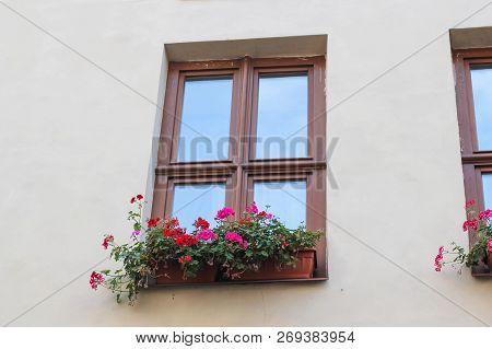 Window And Flowerbox. Window With Flowers. One Window