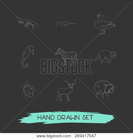 Set Of Zoology Icons Line Style Symbols With Swan, Bug, Thermit And Other Icons For Your Web Mobile