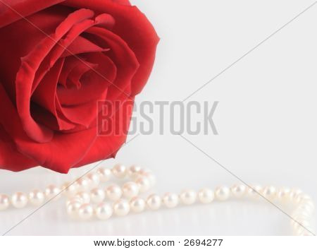 Red Rose And White Pearl