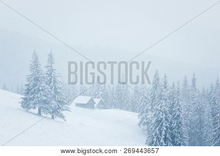 Dreamy winter landscape with a mountain house in the snow. Fog in the spruce forest. Trees covered in frost