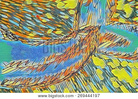 Porpoise Tail Abstract In A Rainbow Of Colors.