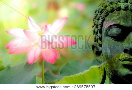 Double Exposure Of Ancient Buddha Face Statue And Pink Lotus Flower Or Water Lily. Buddhism Is The M