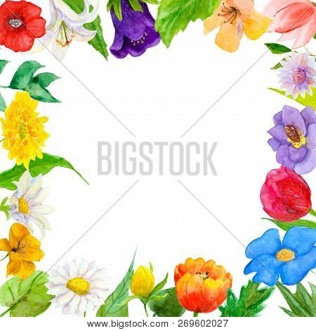 Watercolor Illustration Of Garden And Wildflowers Combined Into A Frame. Greeting Card, Banner And I