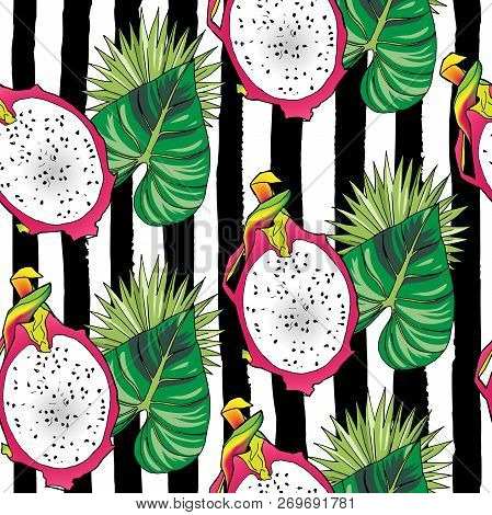 Vector Hand Drawn Abstract Tropical Seamless Pattern Of Half Exotic Fruit Pitahaya On Black Strips.