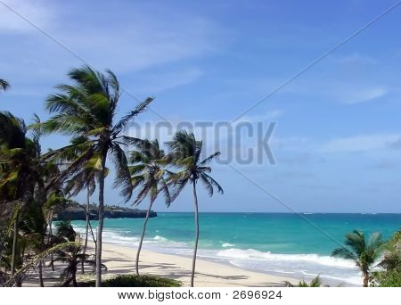 Barbados South Coast