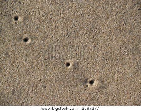 Beach With Air Holes From Sand Crabs