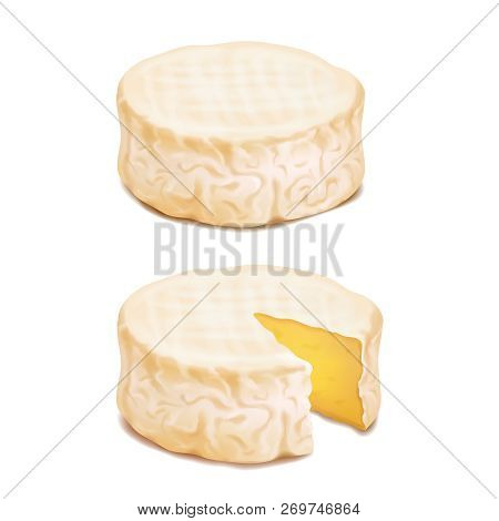 Camembert Or Brie Cheese Block. Realistic Vector Icon Illustration