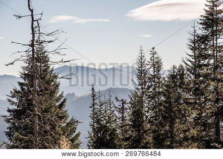 View To Kralovoholske Tatry Mountain Range With Highest Kralova Hola Hill From Sedlo Javorie Mountai