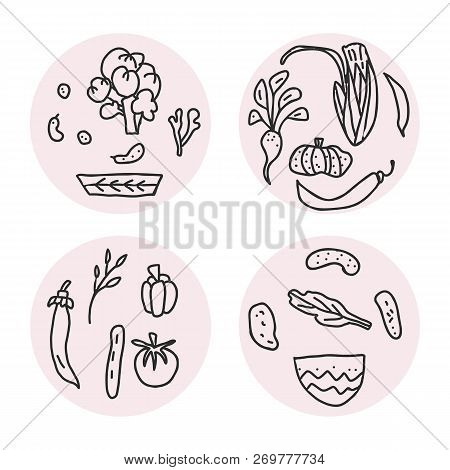 Set Of Vector Round Badges Of Vegetables. Collection Of Veg In Doodle Style Isolated On White Backgr