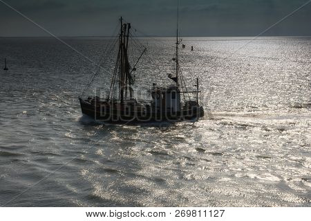 Shrimp Boat At North Sea In North Frisia Near Buesum,schleswig-holstein,germany