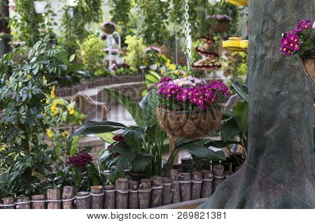 Tranquil Garden Close-up With Flowers And A Tree Trunk