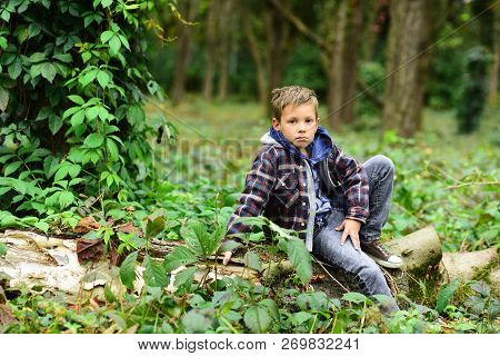 A Halt In The Woods. Small Boy Halt And Relax Sitting On Tree In Forest. Small Boy Resting On Nature