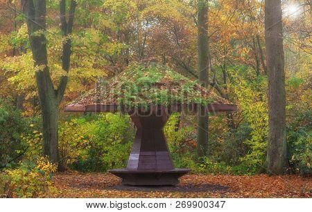 Autumn Landscape In Bergisches Land In Ohligser Heide Nature Reserve,solingen,north Rhine Westphalia