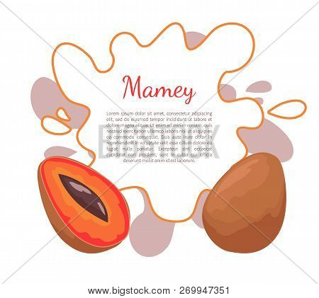 Mamey Exotic Juicy Fruit Vector Poster Frame And Text. Edible Food, Dieting Vegetarian Banner. Mamme