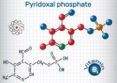 Pyridoxal phosphate (PLP, pyridoxal 5'-phosphate, P5P), vitamin B6, is a coenzyme. Structural chemical formula and molecule model. Sheet of paper in a cage. Vector illustration poster