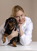 One young veterinarian woman holding a black dog. poster